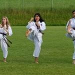 Karate Do-Sana1