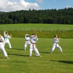 Karate Do-Sana2